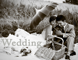 Wedding Gallery Link
